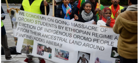 Oromo community in and arround Hamer, Norway, demonstrats against ongoing mass killing of Oromo students in Oromia